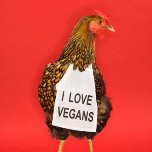 Vegan Jams